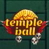 Шарик и планки (Temple ball)